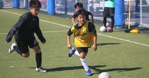 サッカースクールの画像